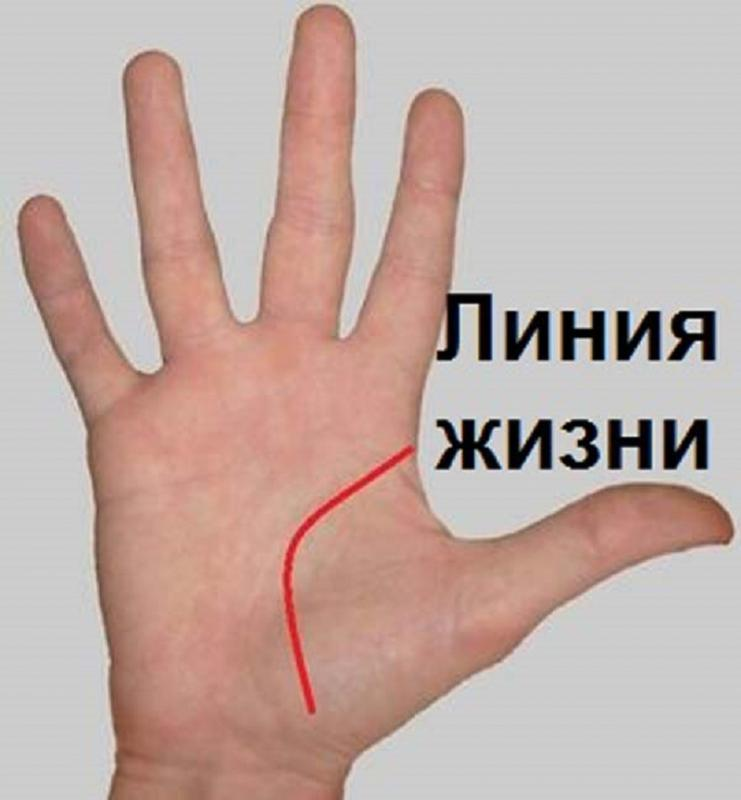 Гадание по руке обозначение линий на руке